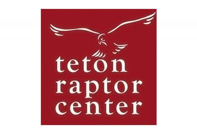 Teton Raptor Center