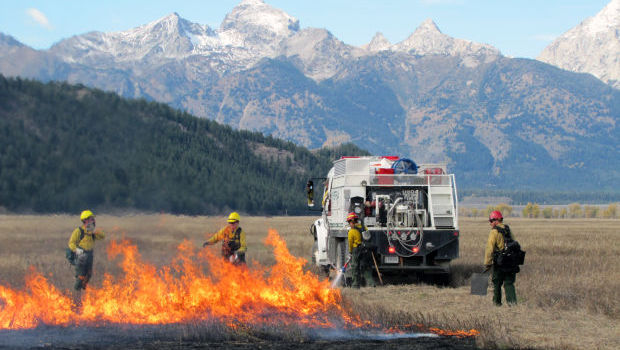 Controlled Burn In Grand Teton National Park